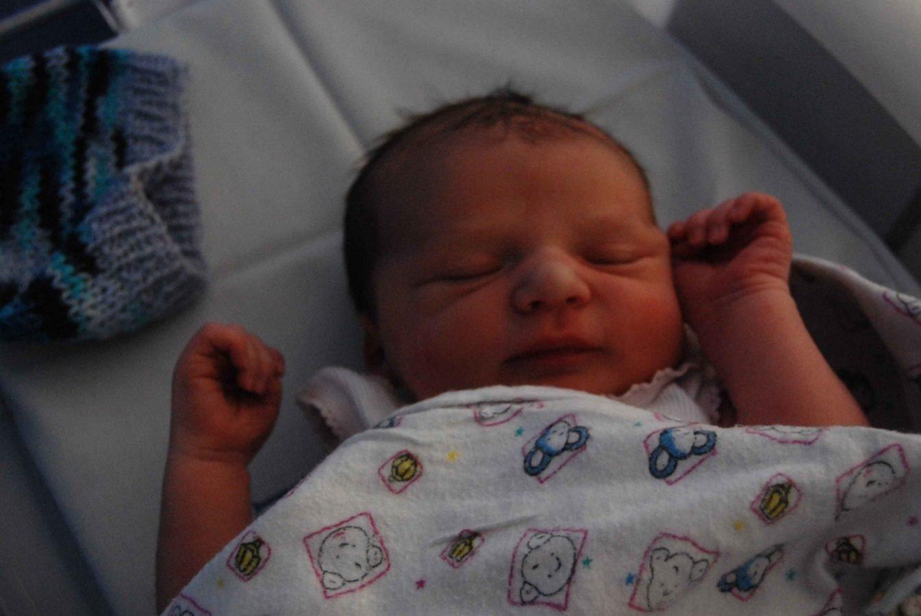 Harley born June 7th 2015