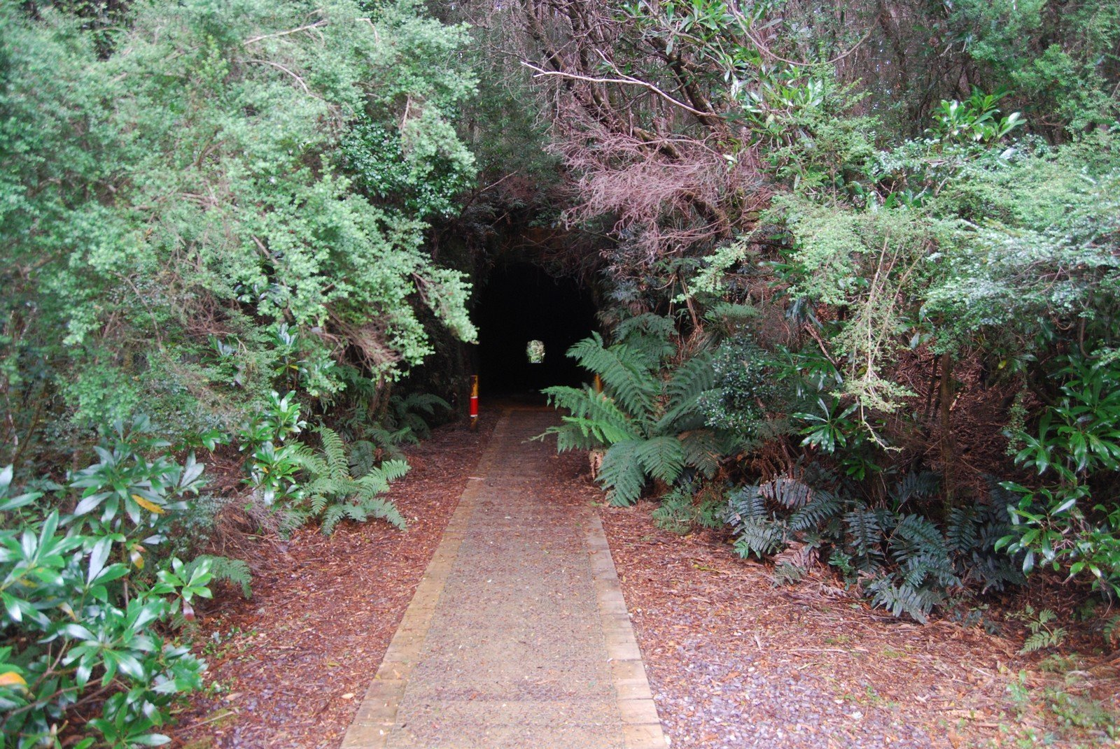 The Spray Tunel Zeehan.007 14h01m08s2019 03 27