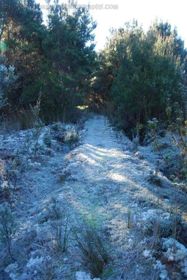 Mount Michael Blue Tier.005 10h58m32s2019 06 23