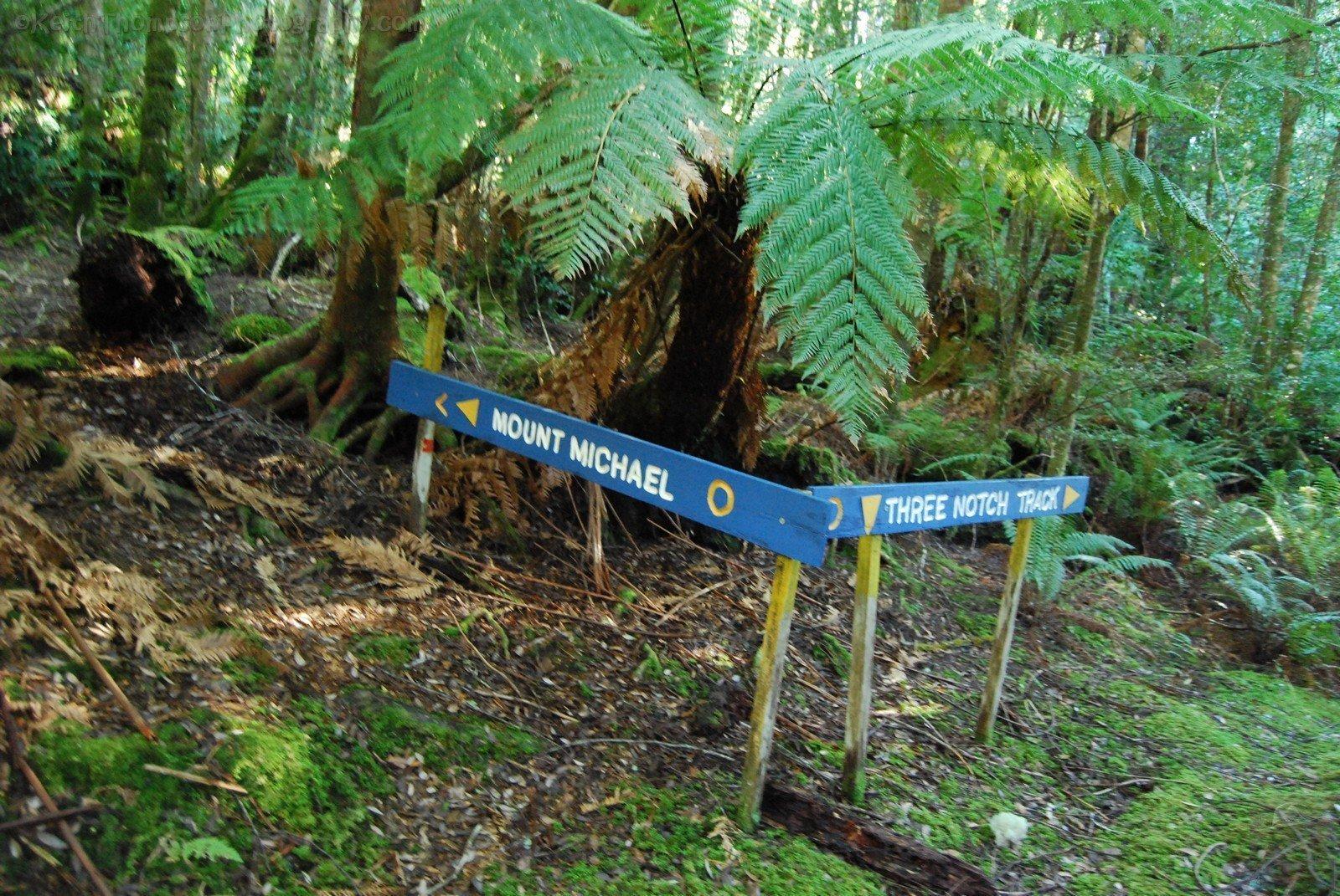 Mount Michael Blue Tier.030 11h17m39s2019 06 23