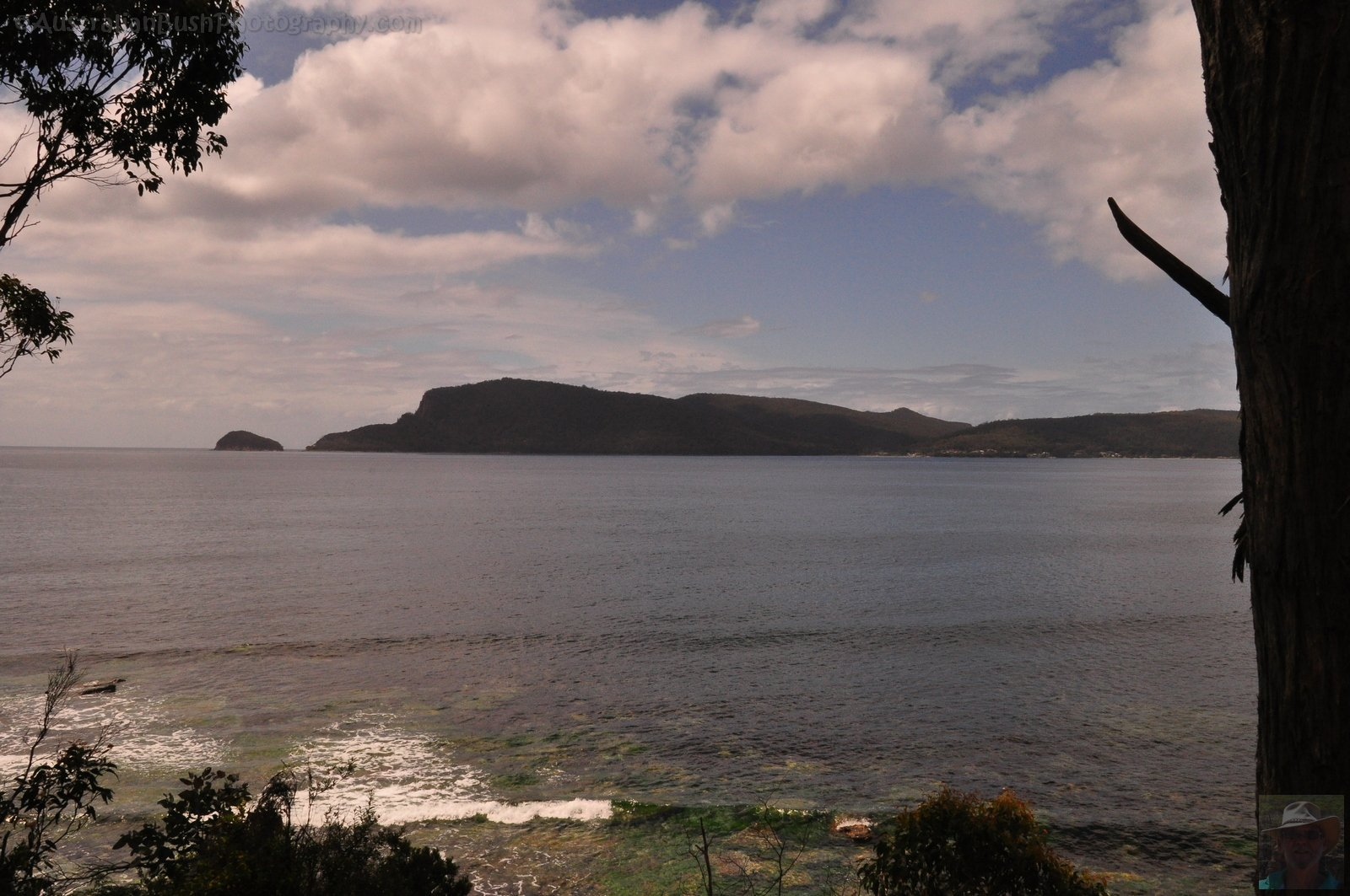Point and Penguin Island from Coal Point Lookout