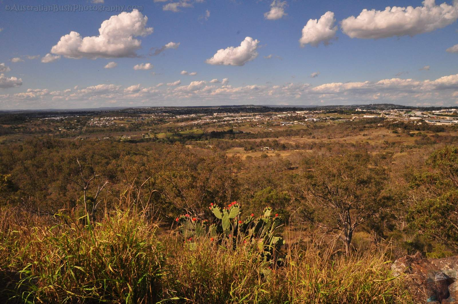 Toowoomba Lookouts – Mount Peel